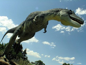 Un redoutable Daspletosaurus en train de chasser.